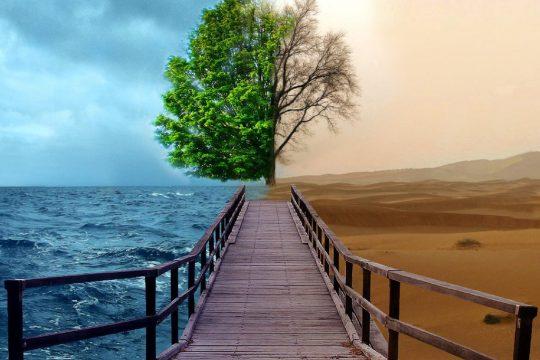 Мифы и недоразумения связанные с Трансцендентальной Медитацией.