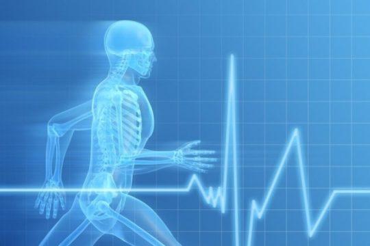 Как улучшить работу внутренних органов и систем организма.