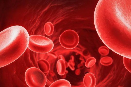 Может ли трансцендентальная медитация контролировать уровень сахара в крови и уровень холестерина?